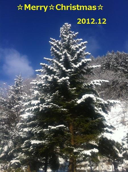 2011-12-27T17_26_31-d2f83.jpg